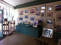 Driftwood Gallery