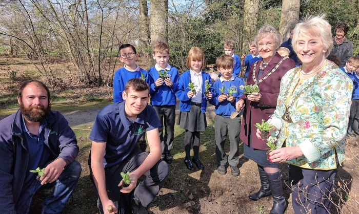 English Tourism Week Celebrations at Fairhaven Woodland and Water Garden