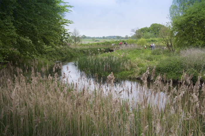 Pensthorpe Natural Park recruits 'Water Warriors'