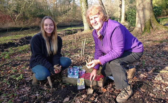 Notcutts Donates Bulbs to Fairhaven Woodland and Water Garden