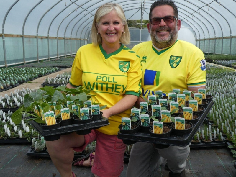 Norfolk nursery cooks up a tasty way to celebrate for green and yellow-fingered Canaries fans